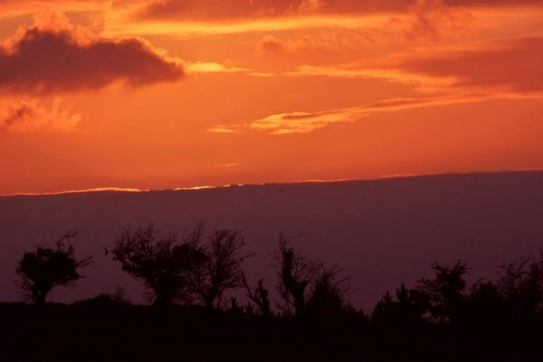 2014-04-15 A Red Sky at Night - taken by Geraldine Dennehy in Ballydaly at 8.15pm