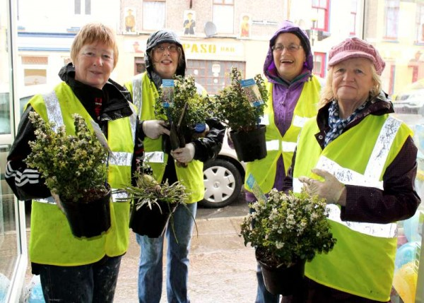 Noreen, Pat, Patsy and Kathleen of Millstreet Tidy Towns Association begin planting the many decorative tubs throughout Millstreet Town this morning.   Considering that we shall be hosting the European Juggling Convention and the European Pony Championships this Summer it's important that the town will be in full colourful bloom for those exciting events.   Click on the images to enlarge.  (S.R.)