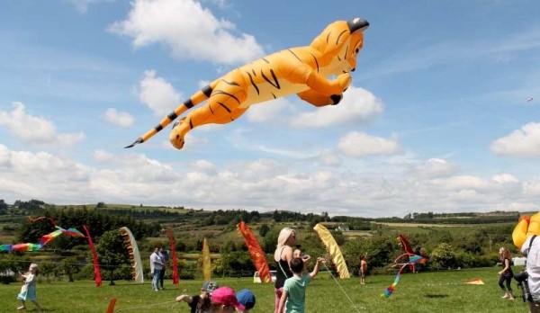 1Wonderful Kite Fest at MCP on 15 June 2014 -800