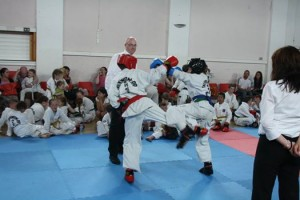2014-06-20 Millstreet's new 6th Kup Green belts 01