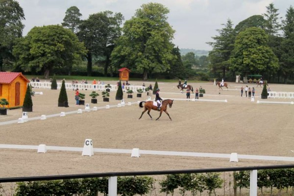 111Thursday 31st August 2014 at Euro Pony Event -800