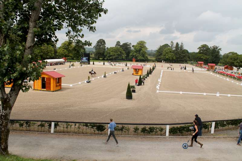 112Thursday 31st August 2014 at Euro Pony Event -800
