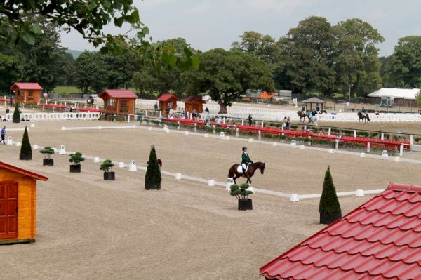 132Thursday 31st August 2014 at Euro Pony Event -800