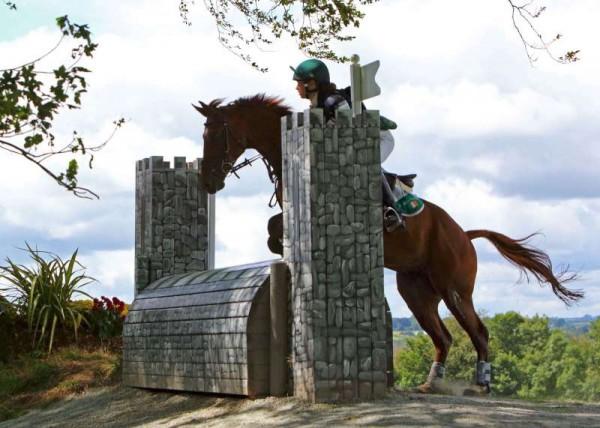 17Denis O'Regan's Superb Coverage of Juggling and Pony 2014 -800