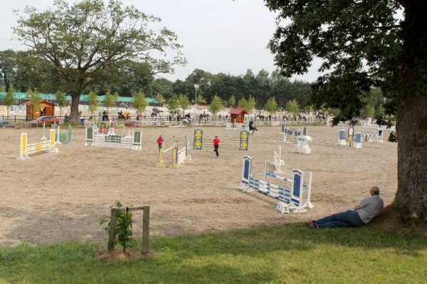 1Thursday 31st August 2014 at Euro Pony Event -800
