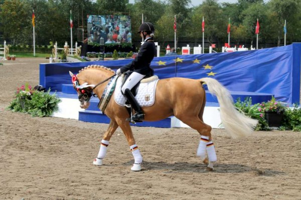20Thursday 31st August 2014 at Euro Pony Event -800