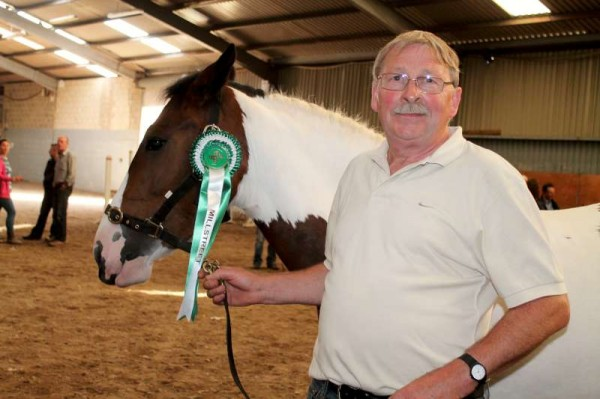 5Joe Roche's Horse Coomlogane Apache Wins at 2014 Show -800