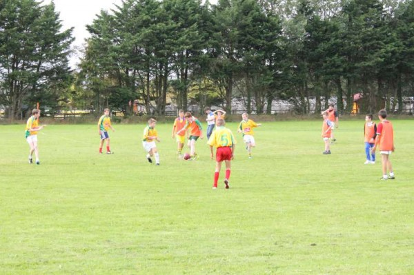 5Matches at Los Zarcos Pitch 30th Aug. 2014 -800
