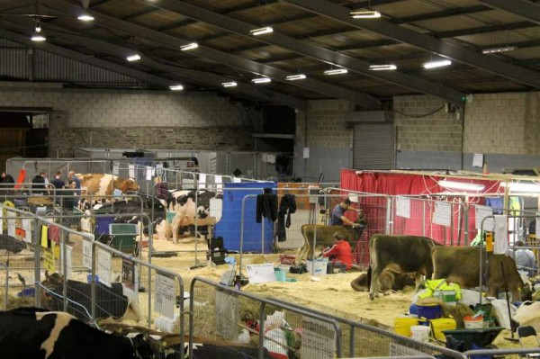 1National Dairy Show Preparations 2014 -800