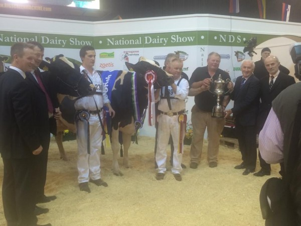 2014-10-18 Millstreet Dairy Show 02
