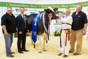 2014-10-18 Millstreet Dairy Show 04 b