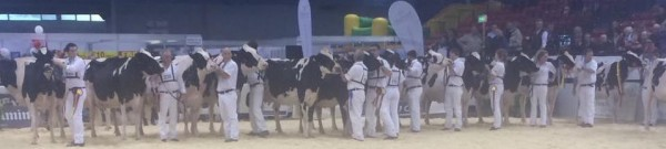 2014-10-18 Millstreet Dairy Show 07