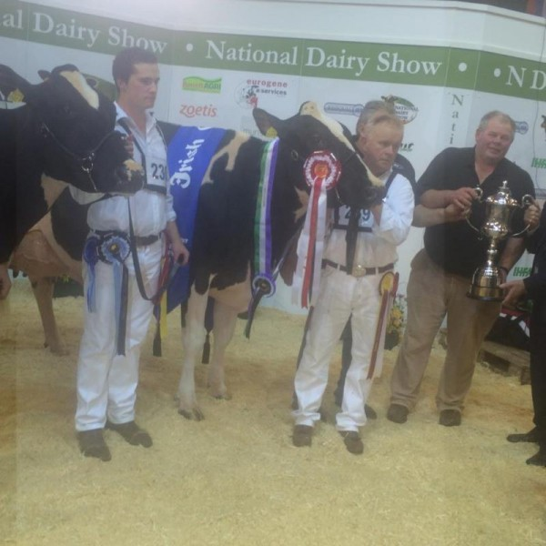 2014-10-18 Millstreet Dairy Show 09