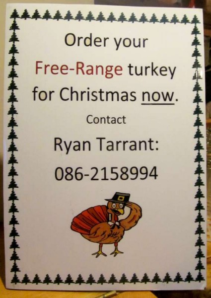 2Ryan's Christmas Turkey Ad 2014 -800