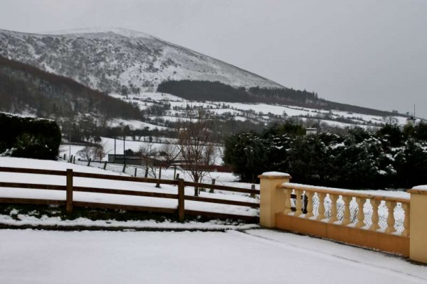 10Morning Snow in Millstreet 14 Jan. 2015 -800