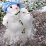 2015-01-14 Snowman Morning 16