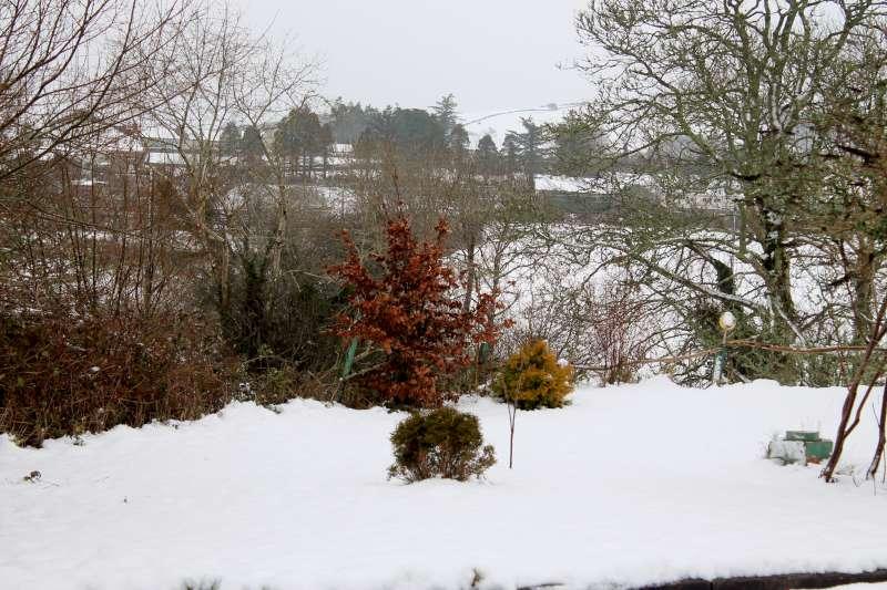 3Morning Snow in Millstreet 14 Jan. 2015 -800