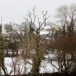 4Morning Snow in Millstreet 14 Jan. 2015 -800