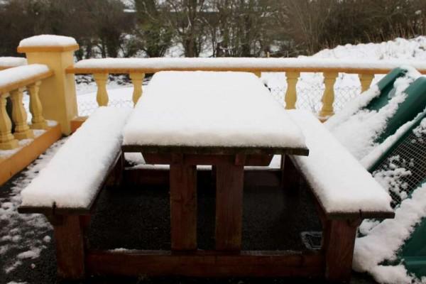 9Morning Snow in Millstreet 14 Jan. 2015 -800