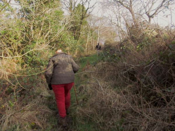 14Mary Russell revisits the Butter Road 1st Feb. 2015 -800