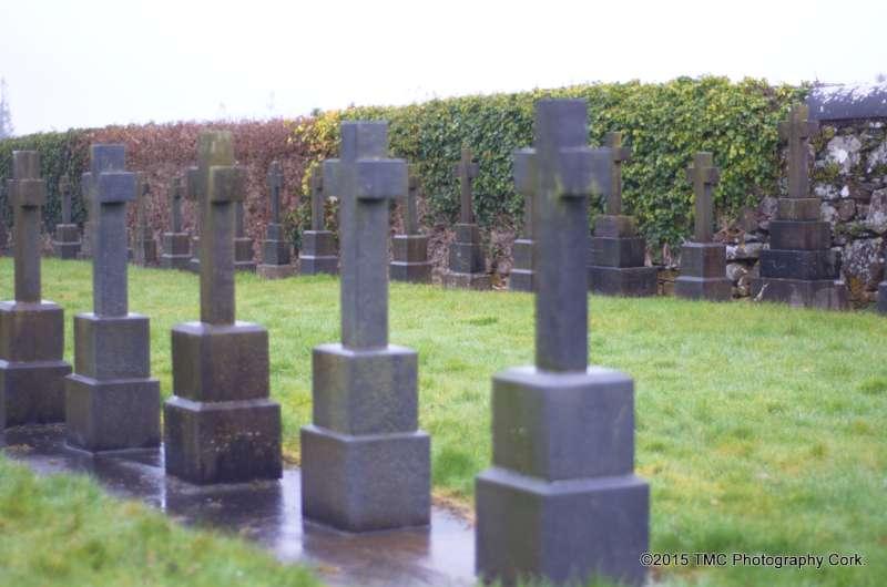 2015-02-04 Convent Plot at Drishane Cemetery 05-800