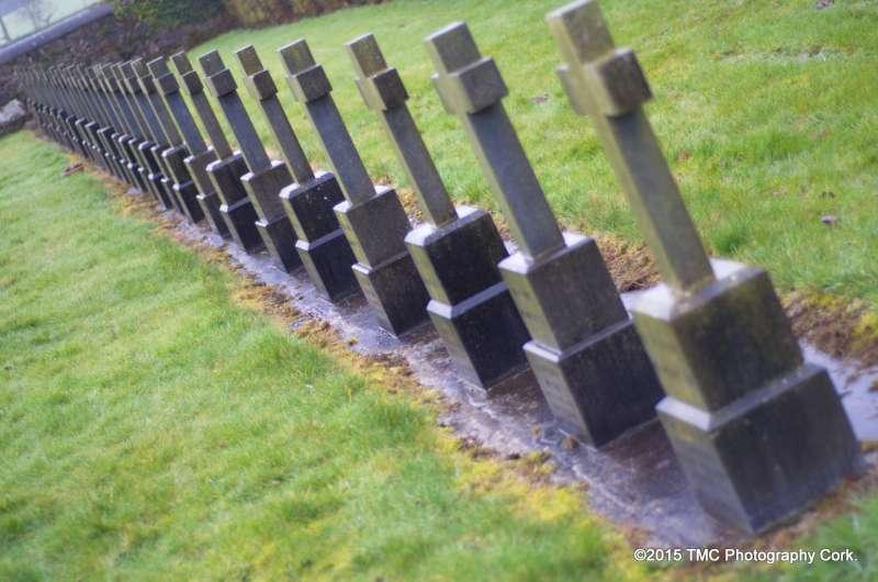2015-02-04 Convent Plot at Drishane Cemetery 06-800