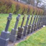 2015-02-04 Convent Plot at Drishane Cemetery 08-800
