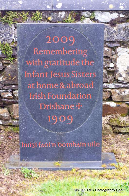 2015-02-04 Convent Plot at Drishane Cemetery 09-800