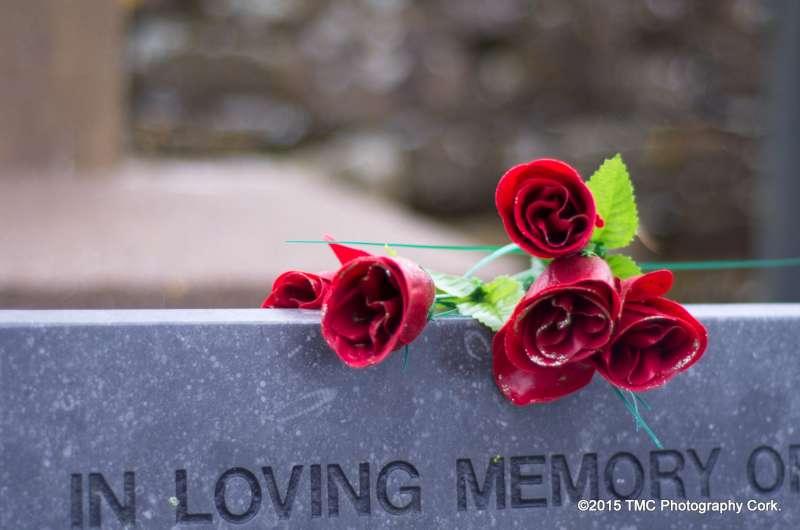 2015-02-04 Convent Plot at Drishane Cemetery 10-800