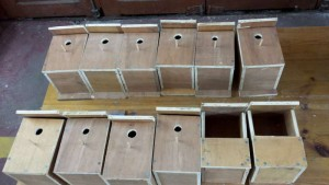 20150310_200137- Men's Shed Nest Boxes