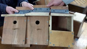 20150310_200752- Men's Shed Nest Boxes