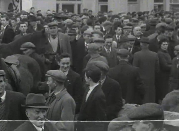 1965 March Horse Fair - an RTÉ Newsbeat report 02