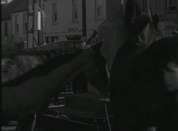 1965 March Horse Fair - an RTÉ Newsbeat report 06 - Horses at the Monument and Manley's