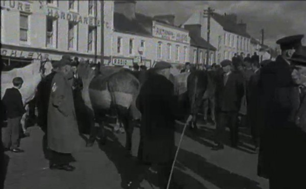 1965 March Horse Fair - an RTÉ Newsbeat report 09