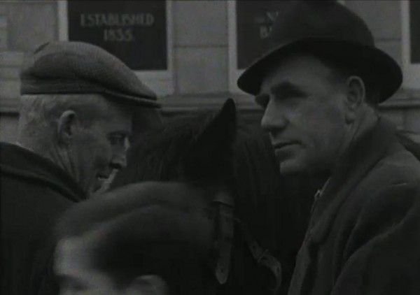 1965 March Horse Fair - an RTÉ Newsbeat report 13 - Established 1835