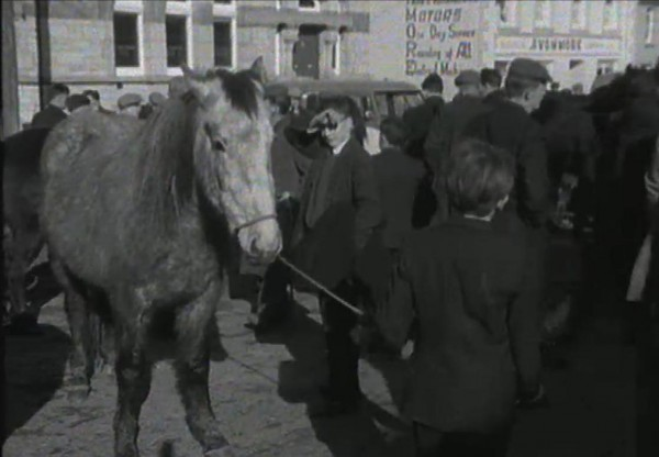 1965 March Horse Fair - an RTÉ Newsbeat report 16 - Bank of Ireland and Avonmore