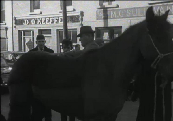 1965 March Horse Fair - an RTÉ Newsbeat report 18 - D O'Keeffe's and M O'Sullivan's (now the Malpaso)