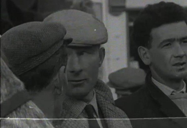 1965 March Horse Fair - an RTÉ Newsbeat report 19