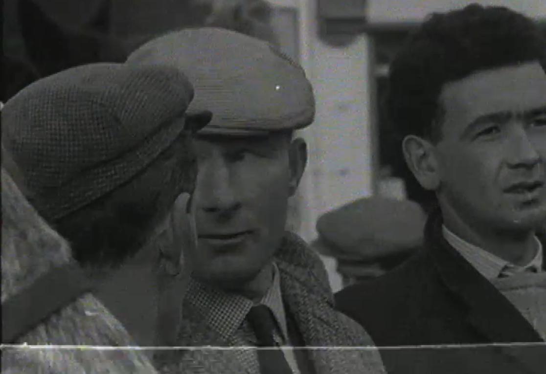 1965 March Horse Fair - an RTÉ Newsbeat report 19