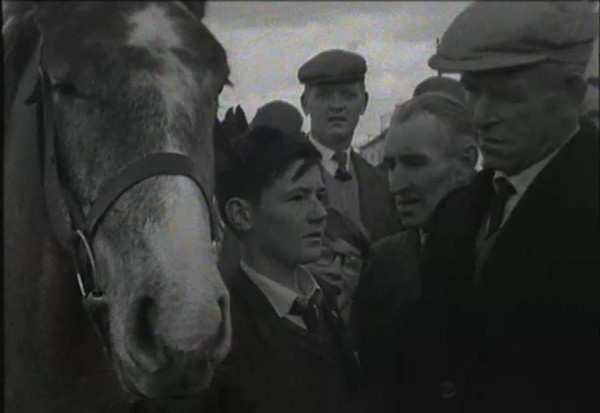 1965 March Horse Fair - an RTÉ Newsbeat report 20