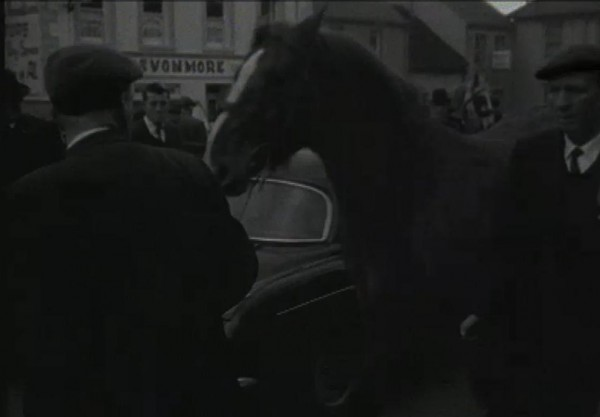 1965 March Horse Fair - an RTÉ Newsbeat report 21