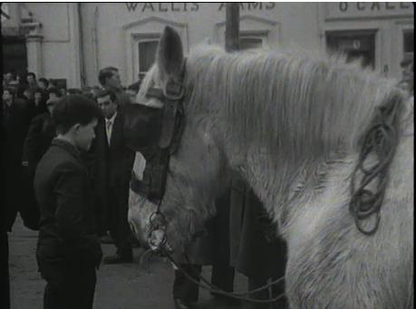 1965 March Horse Fair - an RTÉ Newsbeat report 22 - Wallis Arms O'Callaghan