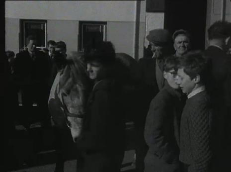 1965 March Horse Fair - an RTÉ Newsbeat report 23