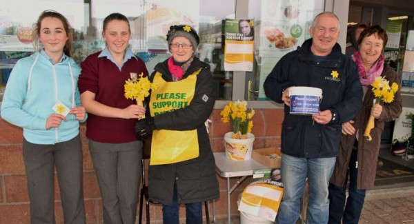 3Daffodil Day 27th March 2015 -800