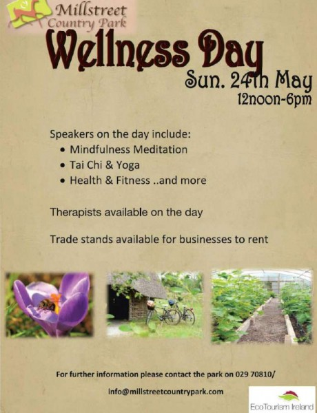 2015-05-24 Wellness Day at Millstreet Country Park - poster-1000