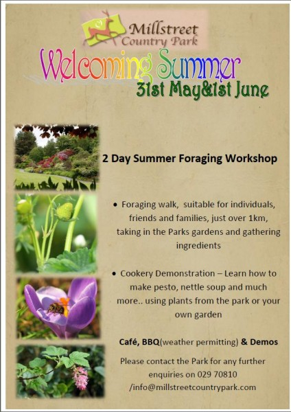 2015-05-31 Summer Foraging at Millstreet Country Park - poster