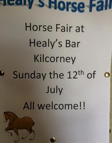 2015-07-12 Healy's Horse Fair - poster