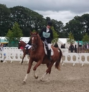 2015-08-11 First Day of Millstreet Horse Show 02