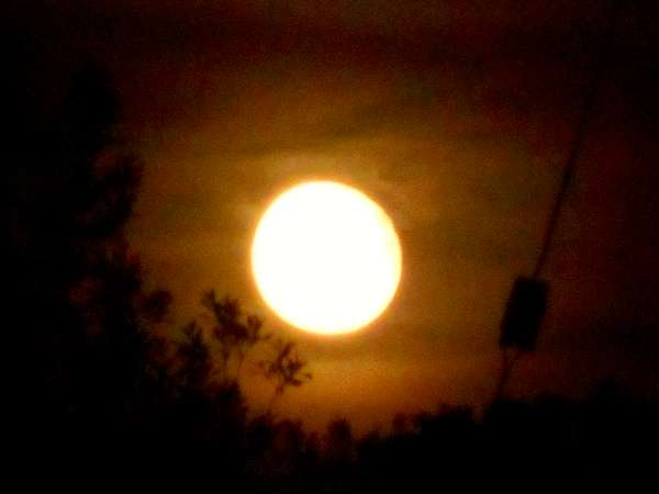 From a red moon on Monday morning over Millstreet we witnessed a beautiful harvest moon on Tuesday night (29th Sept. 2015). Click on the images to enlarge. (S.R.)