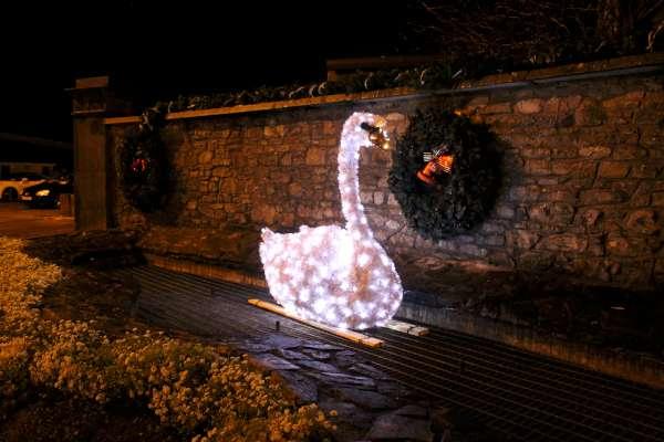 1Christmas Swan 2015 -600